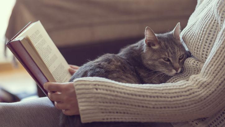猫カフェに適した服装を選んで、楽しく過ごそう!