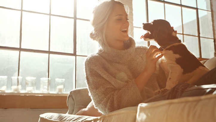 犬が飼い主を信頼しているときの行動を紹介 マチコネ