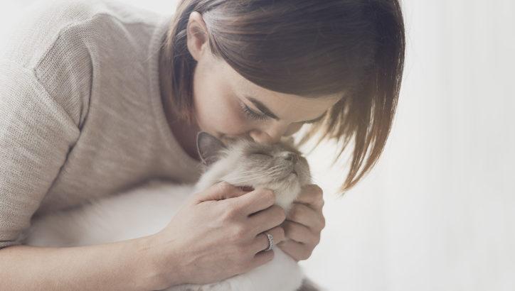 猫好きあるあるの「猫吸い」とは? 猫を吸う魅力を紹介