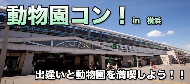 【横浜市内その他のプチ街コン】e-venz(イベンツ)主催 2016年4月16日