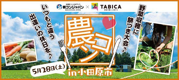 【神奈川県その他の恋活パーティー】街コンジャパン主催 2016年5月28日