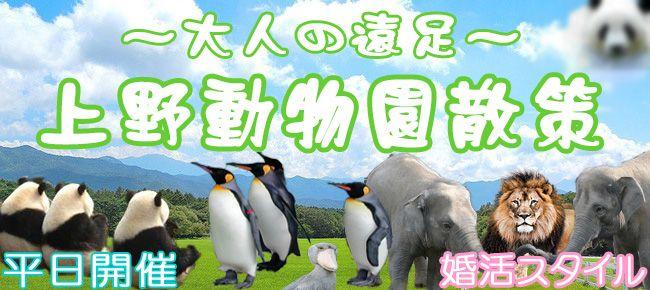 【上野のプチ街コン】株式会社スタイルリンク主催 2016年7月28日
