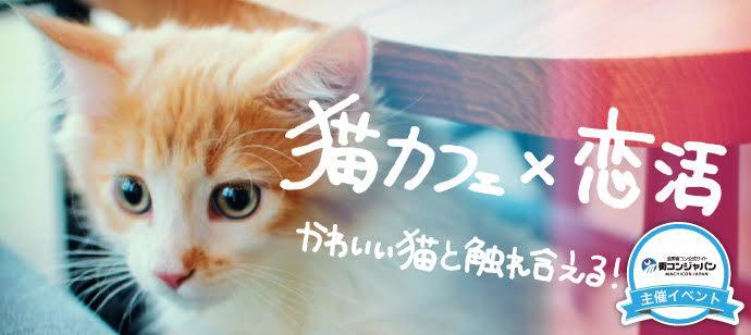 【東京都その他の恋活パーティー】街コンジャパン主催 2016年8月13日