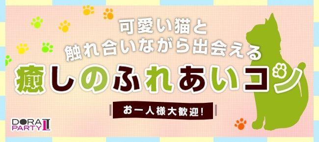 【渋谷のプチ街コン】ドラドラ主催 2016年8月25日