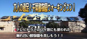 【千葉県その他のプチ街コン】e-venz主催 2016年10月22日