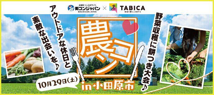 【神奈川県その他の恋活パーティー】街コンジャパン主催 2016年10月29日