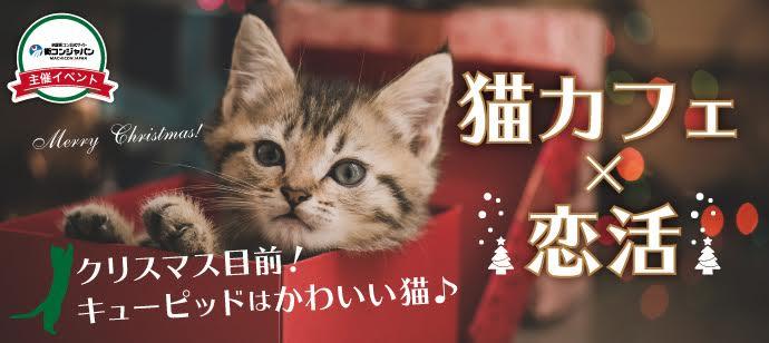 【原宿の恋活パーティー】街コンジャパン主催 2016年11月20日