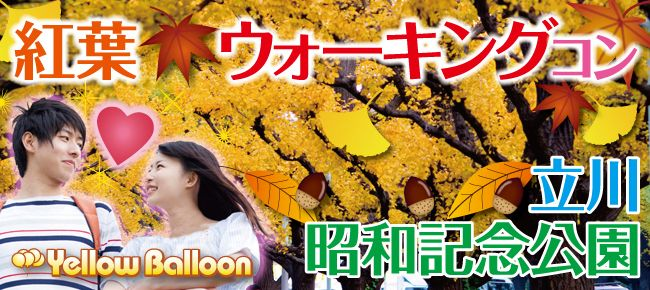 【東京都その他のプチ街コン】イエローバルーン主催 2016年11月12日