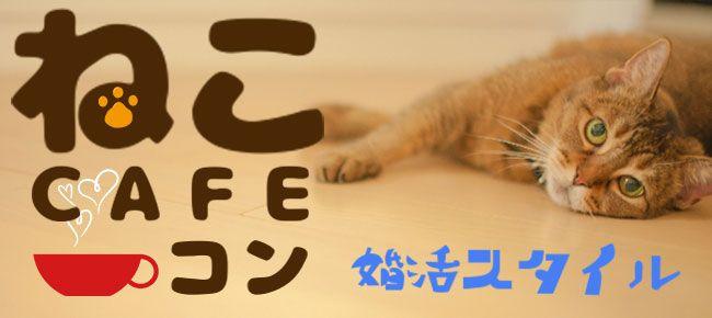 【恵比寿のプチ街コン】株式会社スタイルリンク主催 2016年10月8日