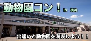 【横浜市内その他のプチ街コン】e-venz(イベンツ)主催 2016年11月3日