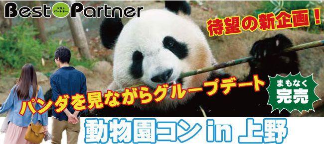 【上野のプチ街コン】ベストパートナー主催 2016年12月3日