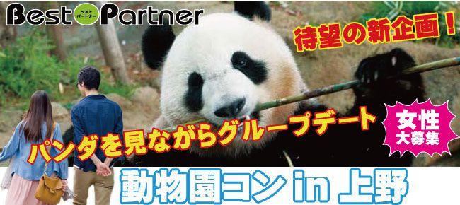 【上野のプチ街コン】ベストパートナー主催 2016年12月11日