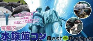 【京都市内その他のプチ街コン】ベストパートナー主催 2016年12月4日