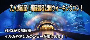 【東京都その他のプチ街コン】e-venz(イベンツ)主催 2016年12月11日