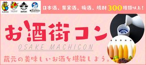 【新宿の街コン】街コンジャパン主催 2017年1月29日