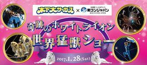 【大分の恋活パーティー】街コンジャパン主催 2017年1月28日
