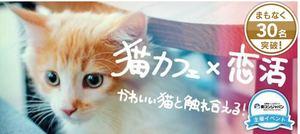 【心斎橋の恋活パーティー】街コンジャパン主催 2017年2月26日