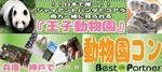【神戸市内その他のプチ街コン】ベストパートナー主催 2017年3月4日