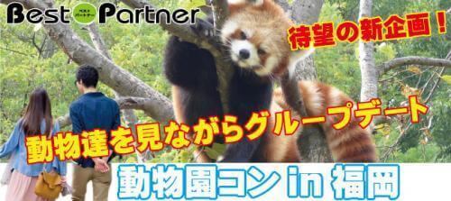 【福岡市内その他のプチ街コン】ベストパートナー主催 2017年3月5日