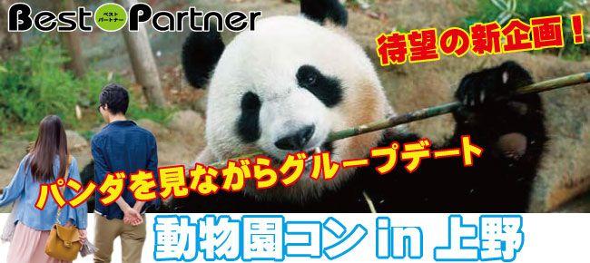 【東京】4/16(日)動物園コン@趣味コン in 上野動物園≪一人参加限定≫気軽に参加できるグループデートが人気☆