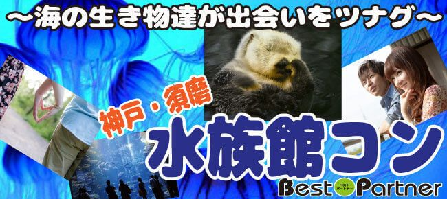 【神戸市内その他のプチ街コン】ベストパートナー主催 2017年5月4日
