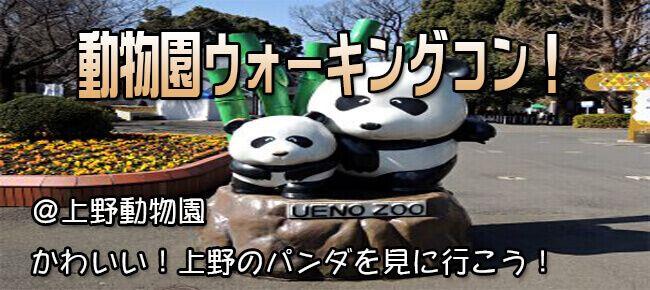 4月13日(木) お花見も楽しめる!★20代限定企画★大人の遠足!パンダに癒されよう!上野公園&動物園ウォーキングコン!(趣味活)