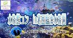 【東京都その他のプチ街コン】エグジット株式会社主催 2017年6月24日