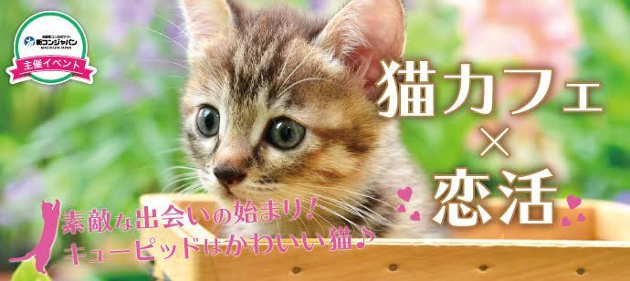 【心斎橋の恋活パーティー】街コンジャパン主催 2017年6月9日