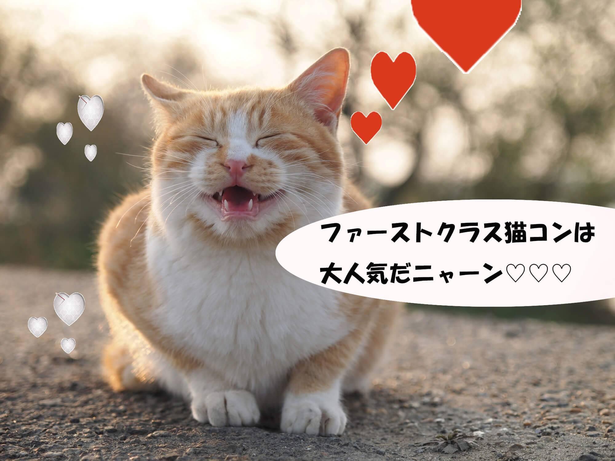 【仙台のプチ街コン】ファーストクラスパーティー主催 2017年7月23日