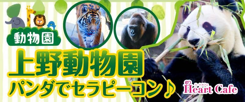 【上野のプチ街コン】株式会社ハートカフェ主催 2017年7月1日
