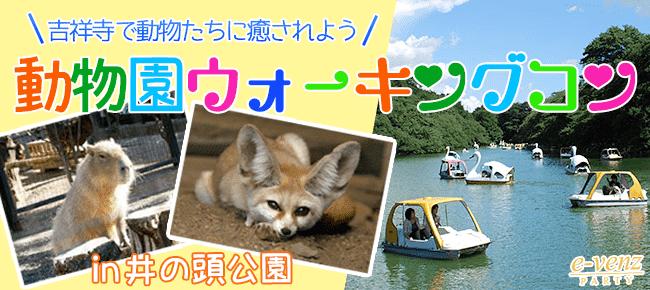 7月15日(土)吉祥寺の井之頭公園で動物たちに癒されながらお散歩しよう!井の頭公園&動物園ウォーキングコン!