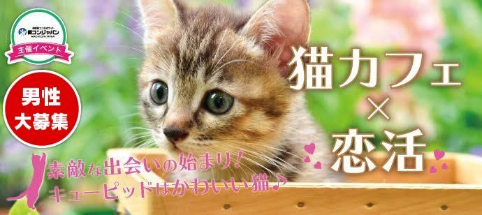 【心斎橋の恋活パーティー】街コンジャパン主催 2017年6月18日