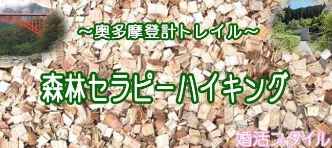 7月8日(土)樹木の香り漂う、森林浴に癒されながら♪セラピーハイキングコン!(趣味活)
