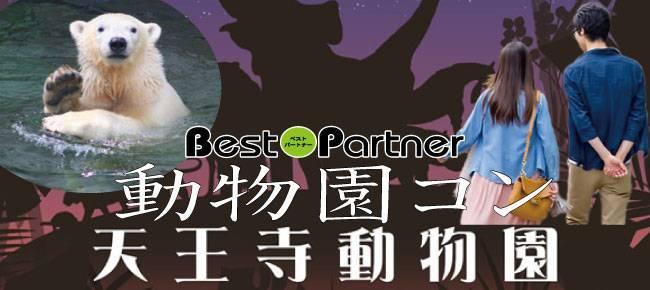 【天王寺のプチ街コン】ベストパートナー主催 2017年8月5日