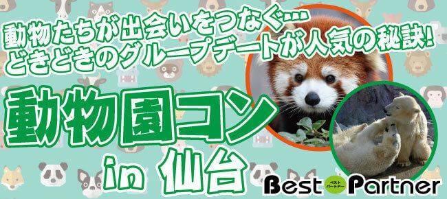 【仙台のプチ街コン】ベストパートナー主催 2017年9月17日