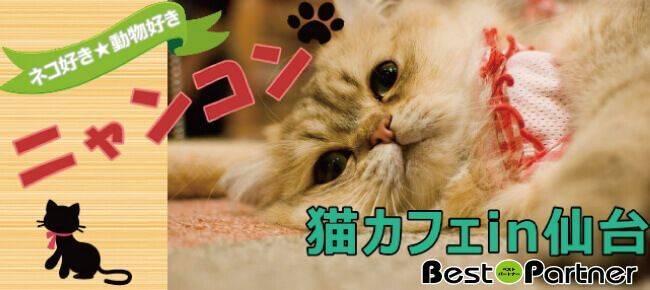【仙台のプチ街コン】ベストパートナー主催 2017年9月18日