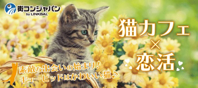 【池袋の恋活パーティー】街コンジャパン主催 2017年7月21日