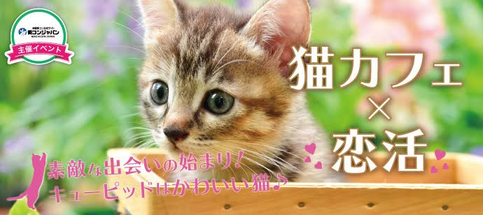 【心斎橋の恋活パーティー】街コンジャパン主催 2017年8月25日