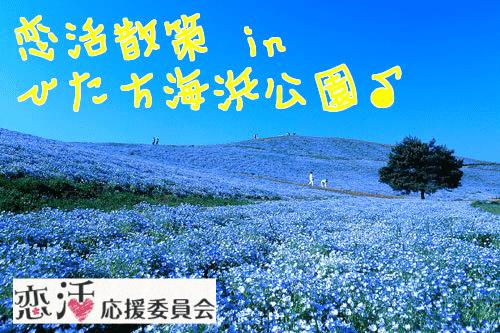 【茨城県その他の街コン】恋活応援委員会主催 2017年11月5日