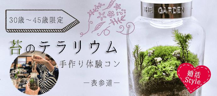 10月28日(土)癒しのテラリウム手作り体験コン!(趣味活)