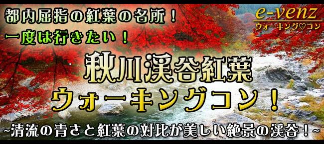 12月2日(土)紅葉見頃!自然豊かな秋川渓谷紅葉ウォーキングコン♪(趣味活)