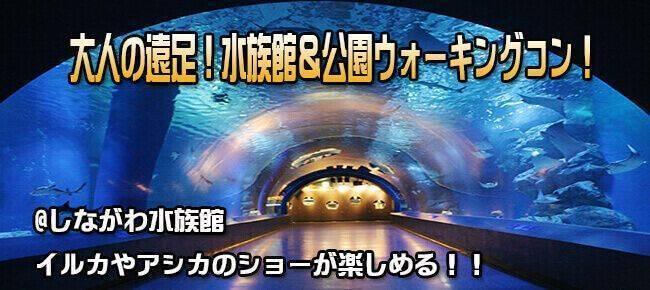 12月9日(土) 品川水族館へ!大人の遠足!イルカやアシカのショーも楽しめる!水族館鑑賞&公園ウォーキングコン!(趣味活)