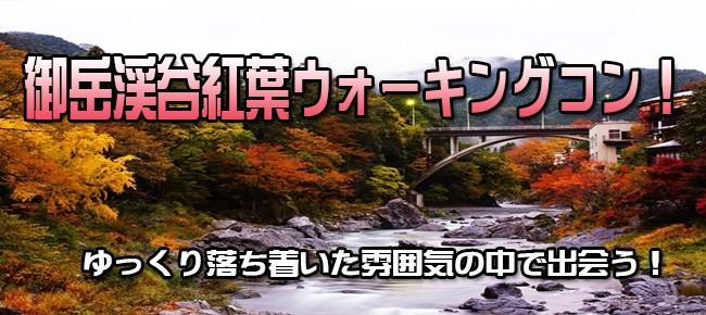 12月10日(日)渓谷のせせらぎを聞きながら紅葉を楽しむ!新宿より1時間と少し。御岳渓谷紅葉ウォーキングコン!