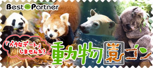 【神戸市内その他のプチ街コン】ベストパートナー主催 2017年12月16日