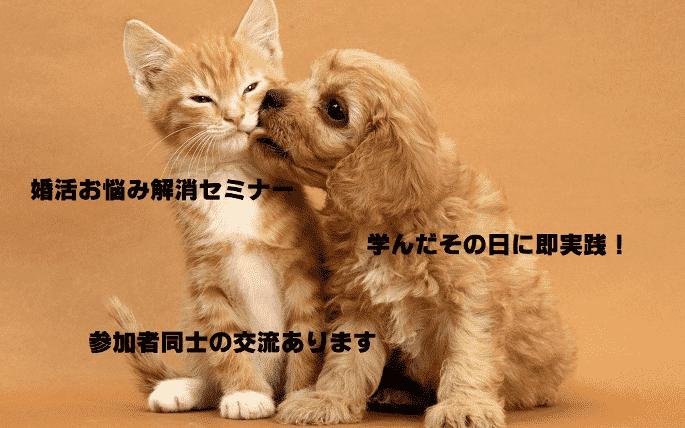 【東京都新宿の自分磨き・セミナー】株式会社Daisy主催 2017年11月17日