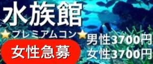 【神戸市内その他のプチ街コン】街コンアウトドア主催 2017年11月26日