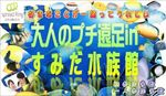【東京都その他のプチ街コン】エグジット株式会社主催 2017年12月17日