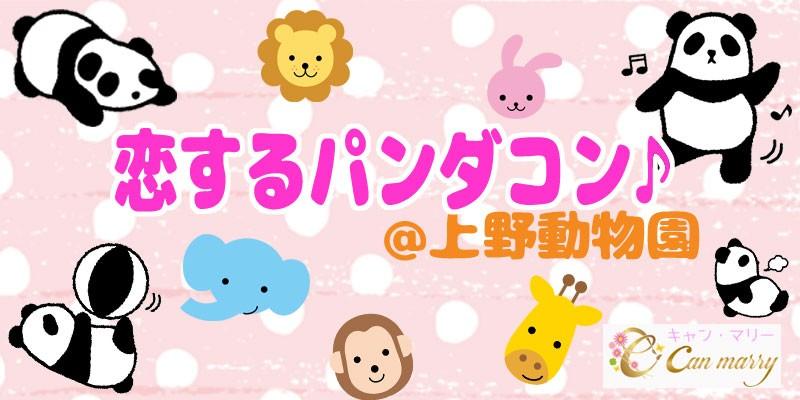 【11/23(木)】赤ちゃんパンダ公開直前!恋するパンダコン★たくさんの動物と触れ合い♪上野動物園コン♪【上野】