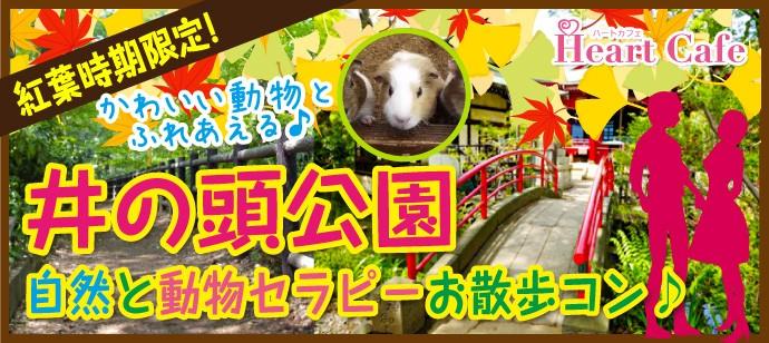 【吉祥寺のプチ街コン】株式会社ハートカフェ主催 2017年11月19日