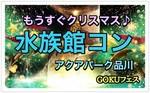 【品川のプチ街コン】GOKUフェスジャパン主催 2017年12月15日